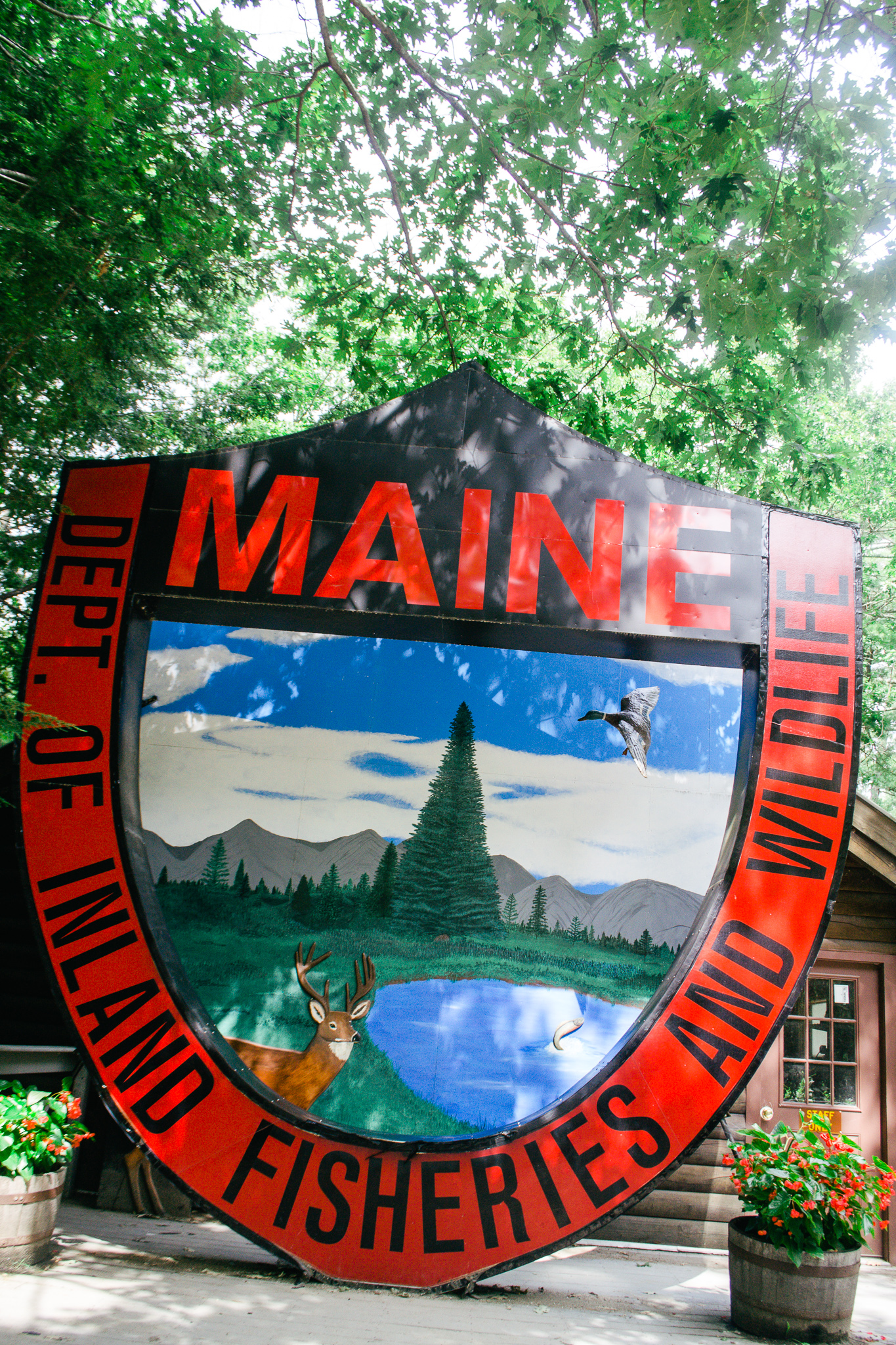 Our Experience at The Maine Wildlife Reserve in Gray, Maine